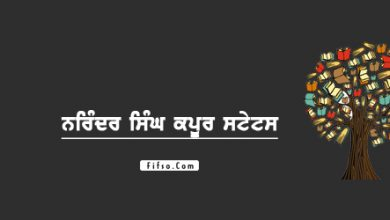 Photo of Narinder Singh Kapoor Best Quotes And Status Collection