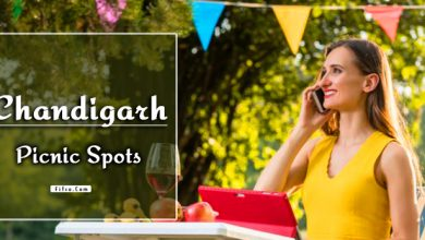 Photo of Best Family Picnic Spots In Chandigarh