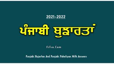 Photo of Old Punjabi Bujartan And Paheliyan With Answers 2021-2022